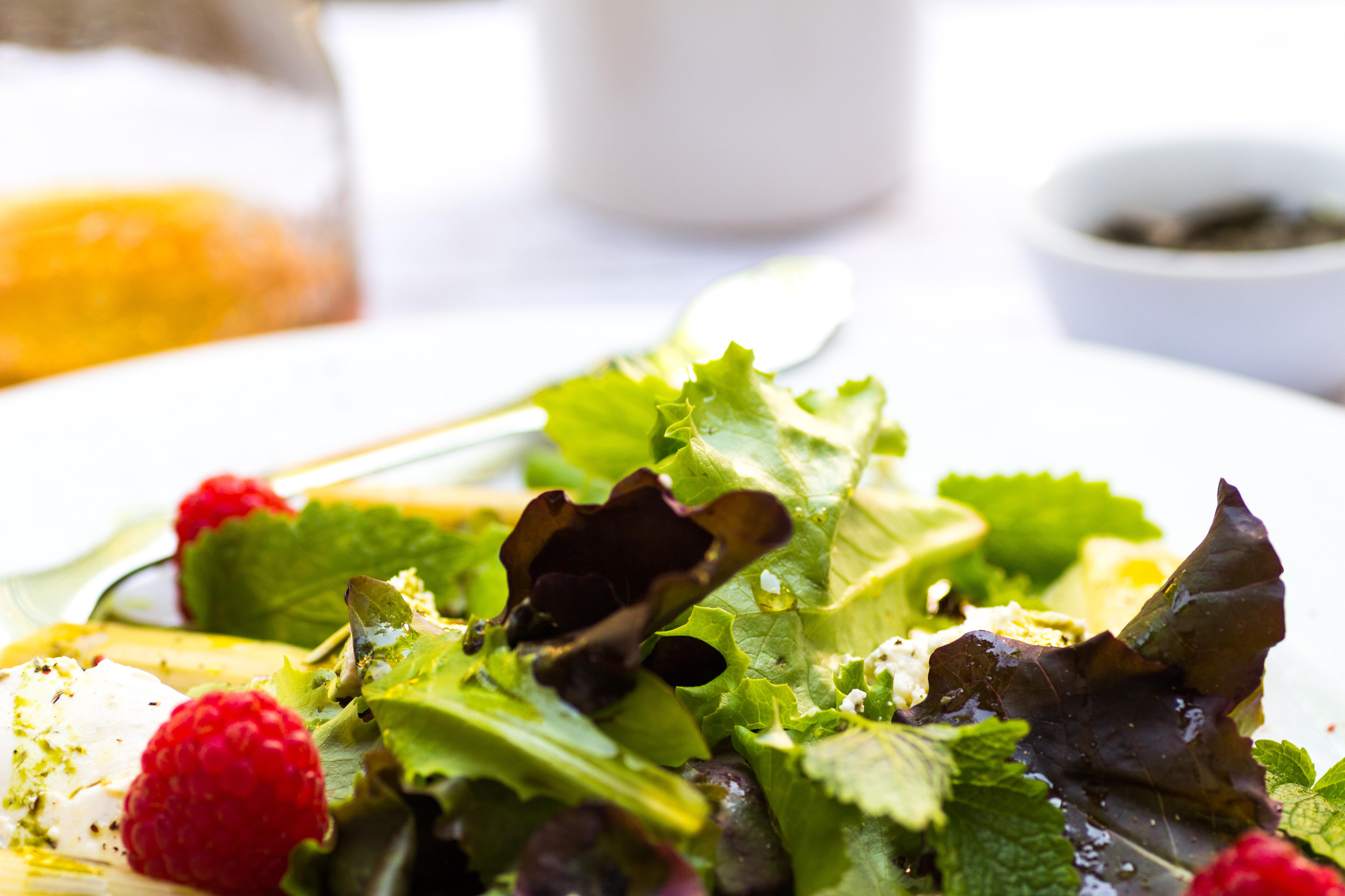 Urlaubsfeeling Salat mit Rhabarber