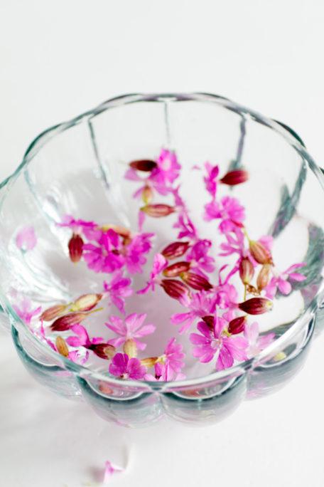 Lichtnelken Blütenessenz