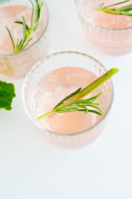Rhabarber-Gin-Fizz Rezept