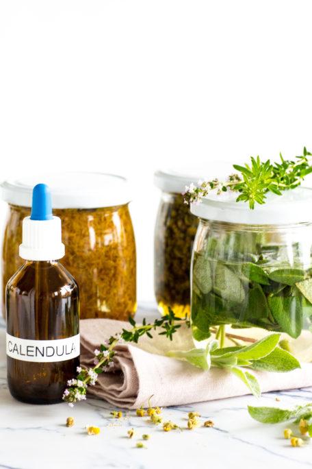 Urtinkturen selber machen - geballte Pflanzenkraft in Flaschen