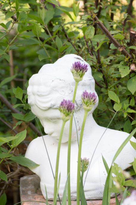 Büste, Mädchenkopf, Garten Alium