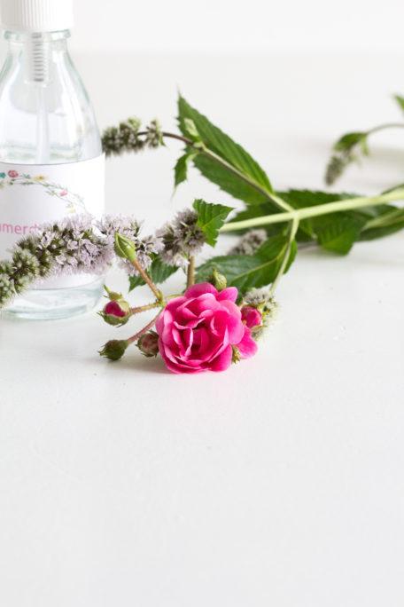 Rosen und Pfefferminz