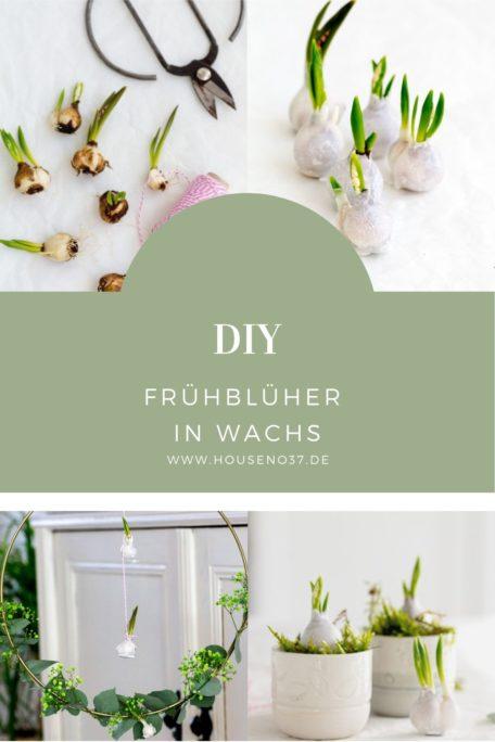 Frühblüher-in-Wachs-DIY
