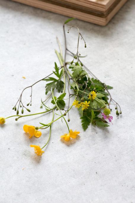 DIY - Blumenpresse selber bauen