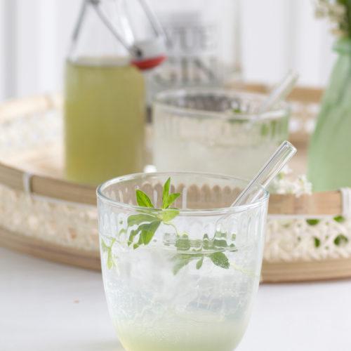 Waldmeister Gin