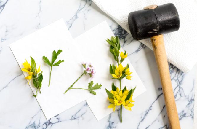 Blütendruck-mit-dem-Hammer